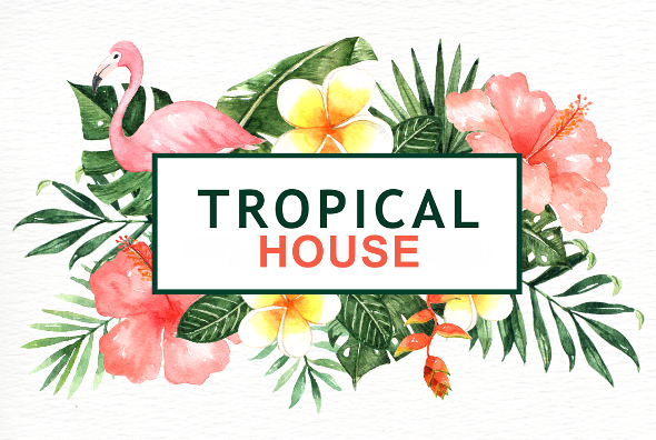 Tropical - 1