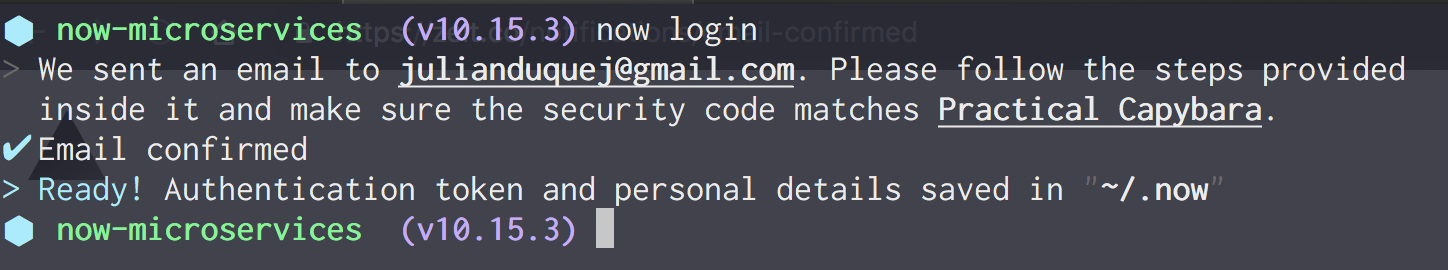 Successful login from Terminal