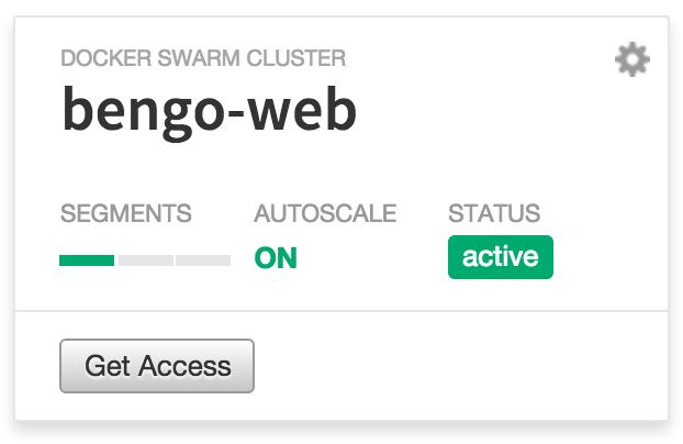 bengo-web cluster in the Carina dashboard