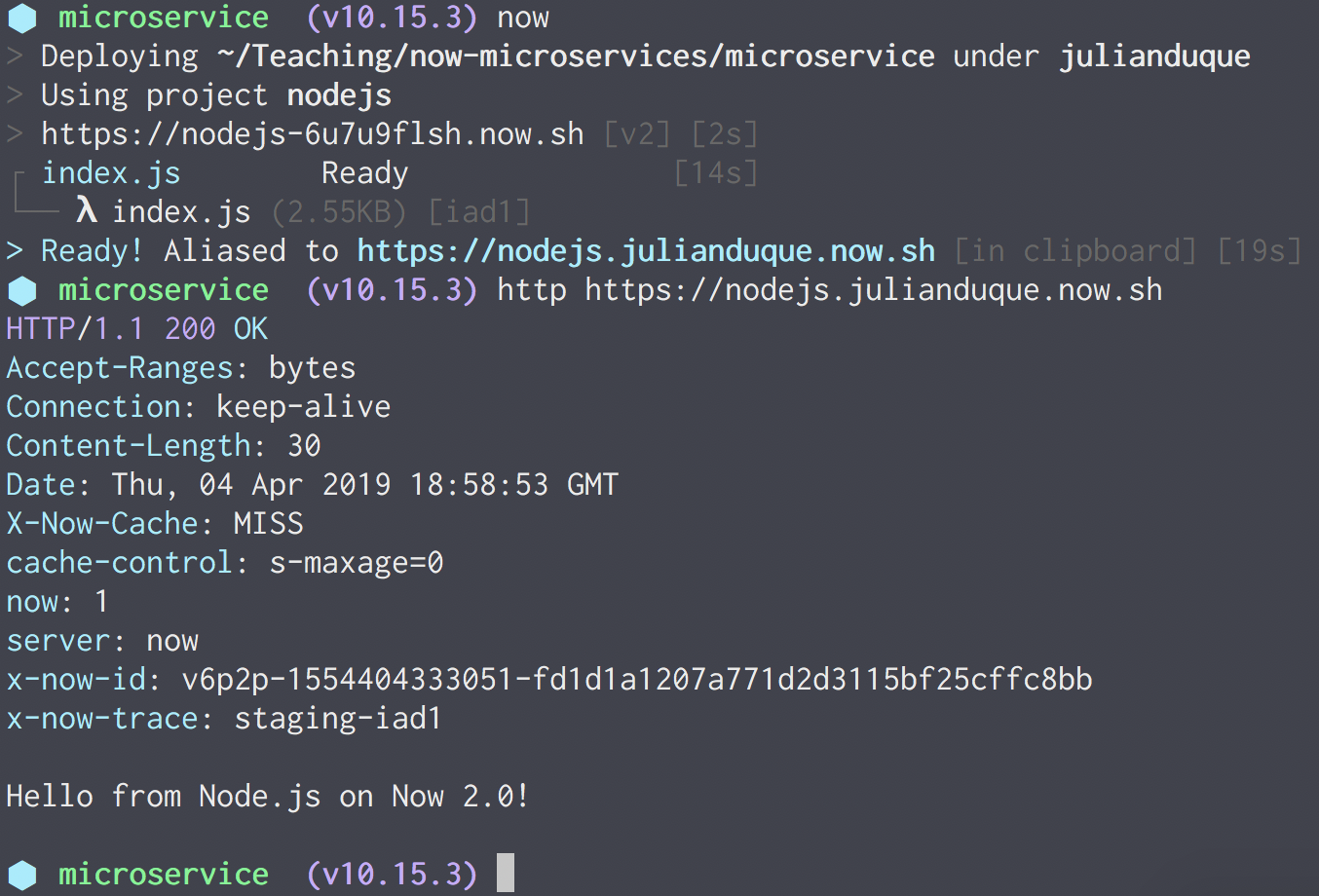 Deploying Node js microservices to ZEIT △ Now - NodeSource