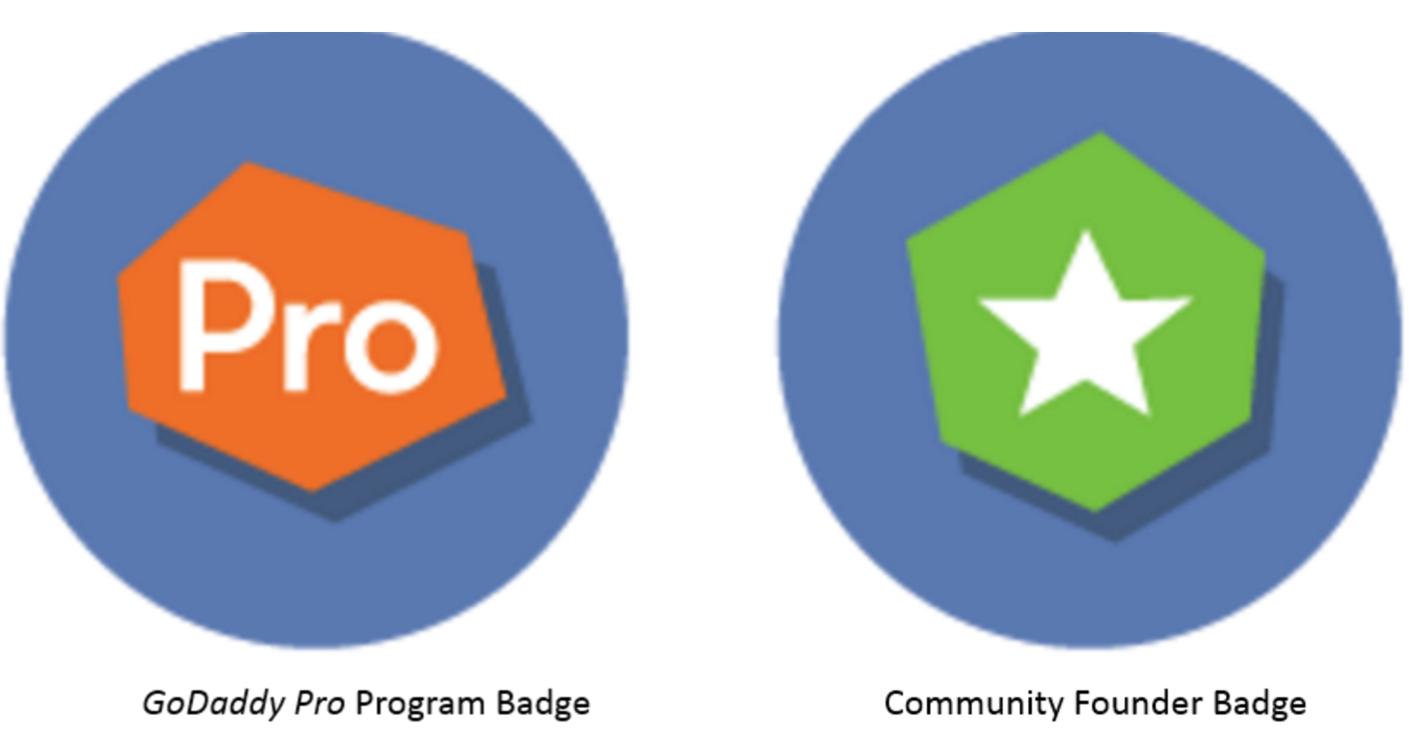 Screenshot of member badges