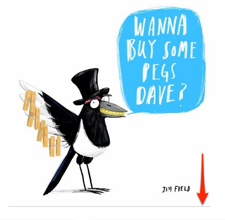 Magpie That illustrated books picture books graphic novels
