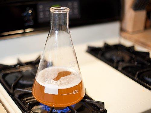 20110226 139750 Yeast Starter Homebrew