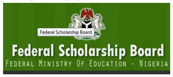 2019/2020 Federal Government Scholarship Award for Undergraduate and Postgraduate Students