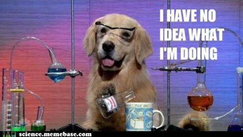 Chemestry Dog