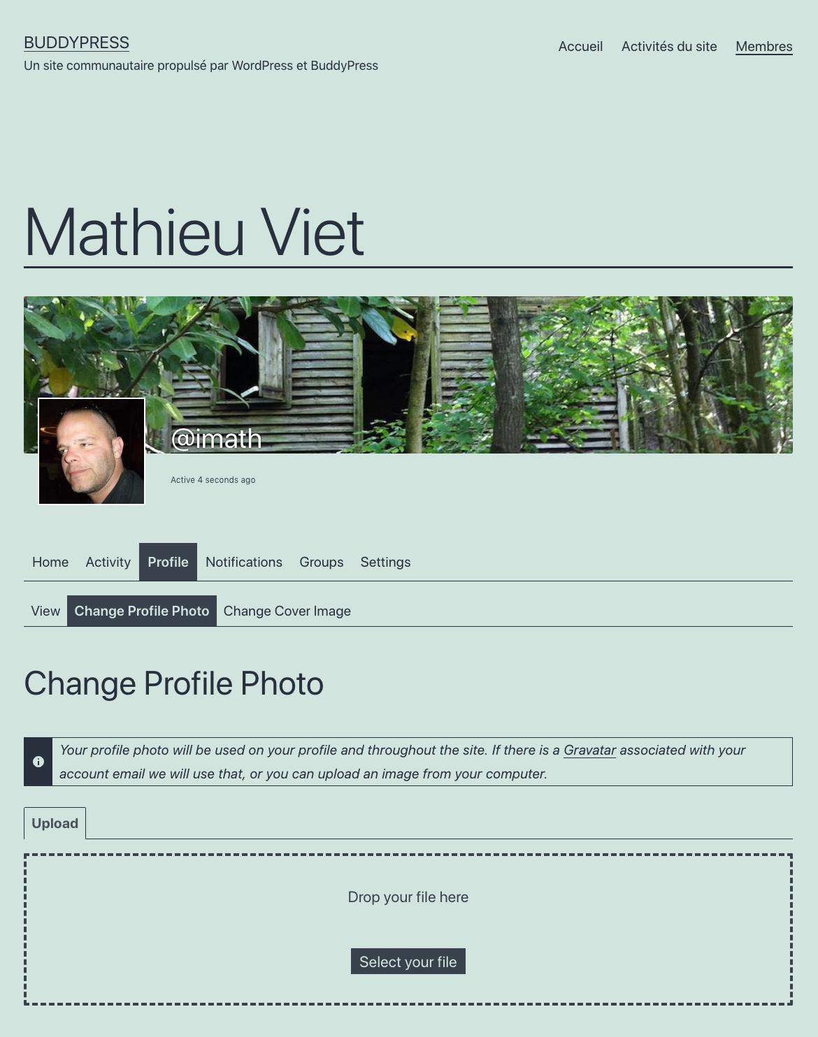 avatar-xProfile off
