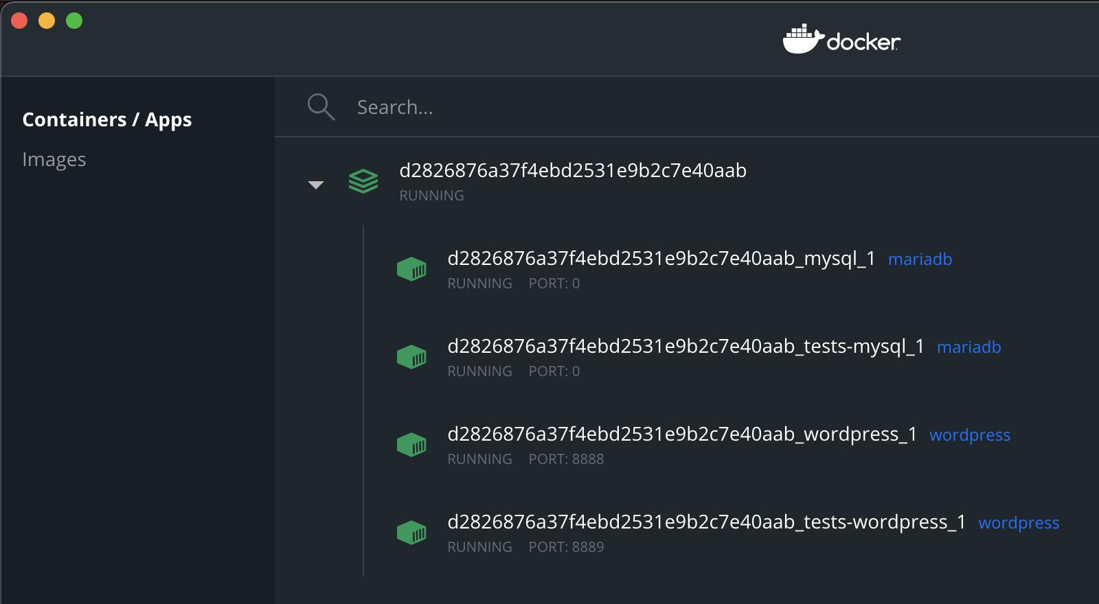 Screenshot of the WordPress Docker Container Running